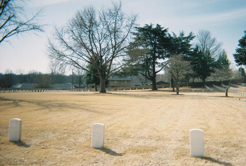 Salisbury trenches