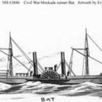 The Voyage of the Bat